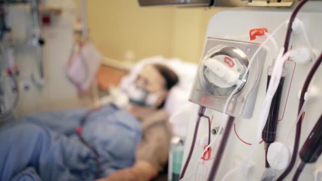 vídeos de stock, filmes e b-roll de paciente idosa durante hemodiálise no hospital - diálise