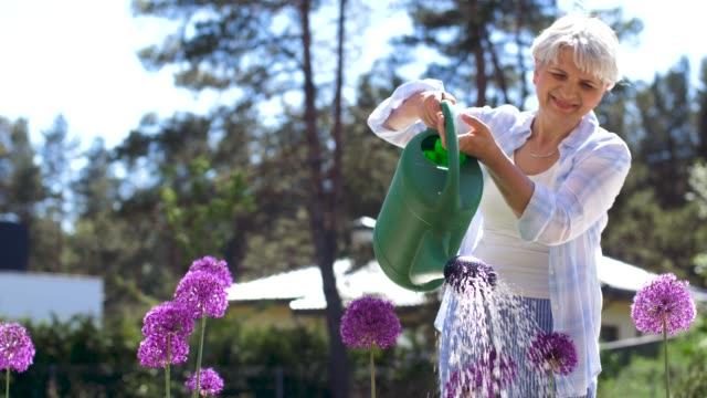 senior woman watering flowers at summer garden - gardino video stock e b–roll