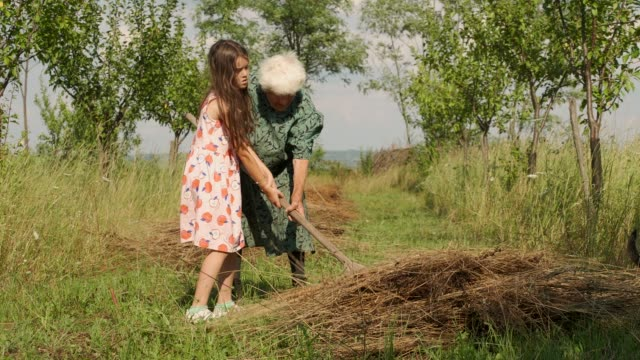 Senior Woman with Granddaughter Working in a Field. Real People. Outdoors A Helping Hand, Active Seniors,USA, Trust, Friendship, Child, Assistance giving tuesday stock videos & royalty-free footage