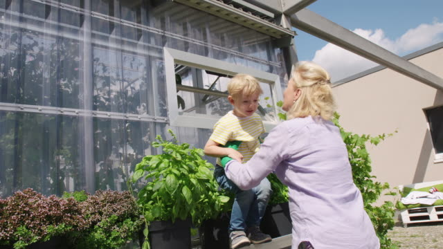 senior woman with her cute grandson in the garden - gardening video stock e b–roll