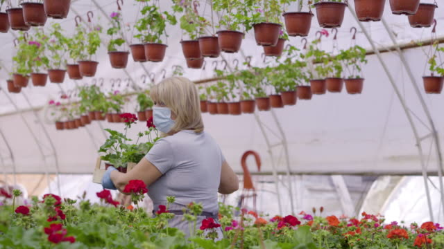 Bидео Senior women in flower greenhouse