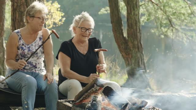 vídeos de stock, filmes e b-roll de mulheres sênior em um piquenique em uma floresta sueca - salsicha