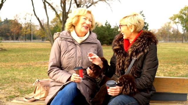 äldre kvinnor sitter på en bänk i parken - mature women studio grey hair bildbanksvideor och videomaterial från bakom kulisserna