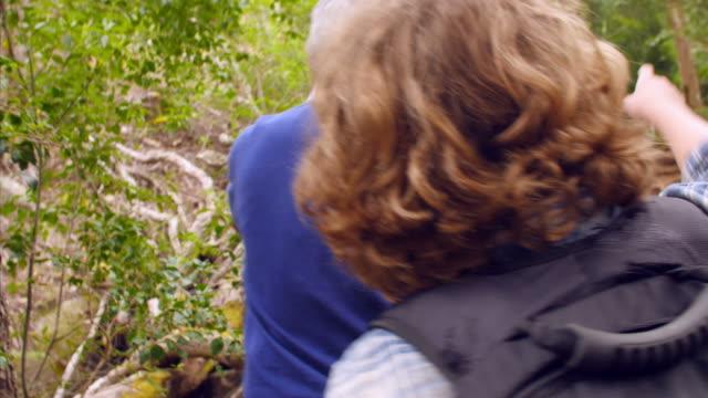 anziani e i nostri nipoti a piedi attraverso la foresta, vista posteriore - nonna e nipote camminare video stock e b–roll