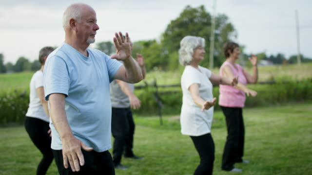 Seniors Being Active A group of senior adults are together in an outdoor park. They are doing Tai Chi, actively moving through different actions. recreational pursuit stock videos & royalty-free footage
