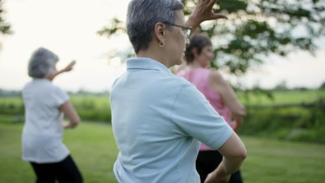 seniors doing martial arts - gente serena video stock e b–roll