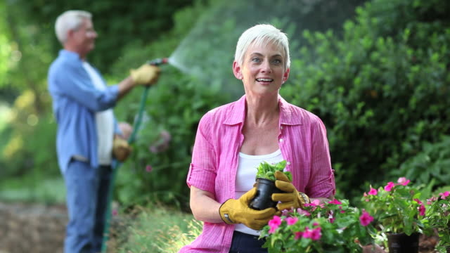 Seniors Gardening and Watering Plants  horticulture stock videos & royalty-free footage