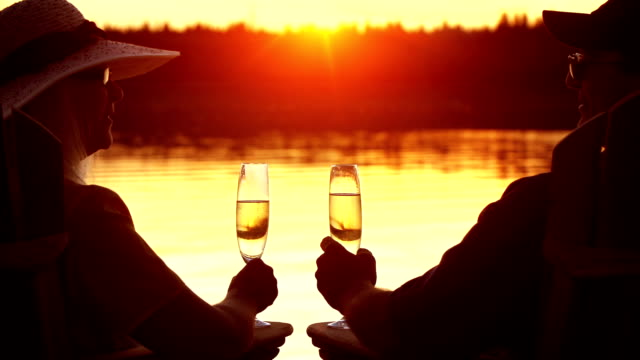 seniors toast in their retirement by a lake. - lakes stock videos and b-roll footage