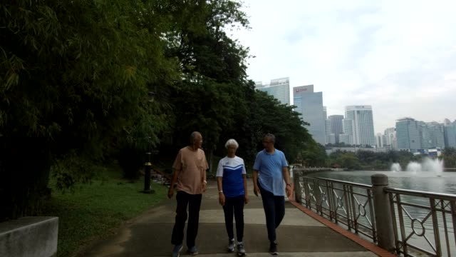 seniors walking in the park - tre persone video stock e b–roll