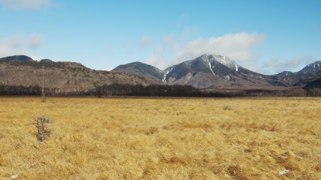 初冬の千丈ヶ原と南台山 ビデオ