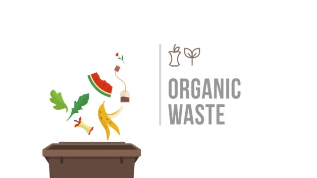 Separate waste collection: organic trash Separate waste collection and recycling educational animation: organic biodegradable trash falling into a trash bin leftovers stock videos & royalty-free footage