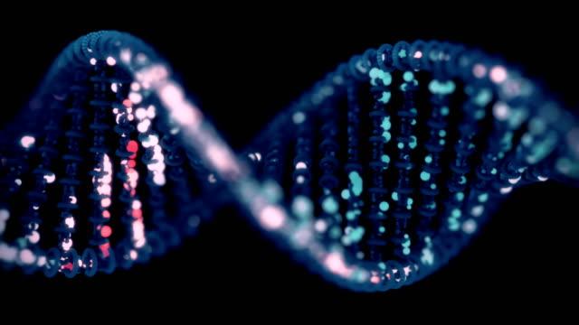 vídeos y material grabado en eventos de stock de dna sequencing / concepto de edición. - cromosoma