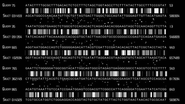vídeos y material grabado en eventos de stock de tacg de secuenciación del adn - adn