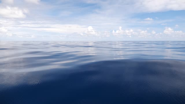 Serene ocean background - video