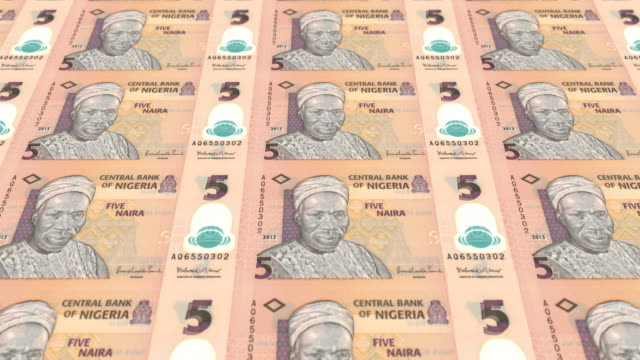 Series of banknotes of five nigerian naira of the Central Bank of Nigeria rolling on screen, coins of the world, cash money, loop video