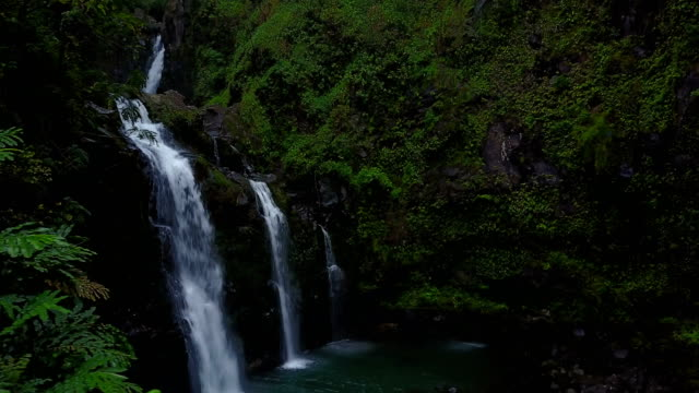 Series of Waterfalls in Thick Lush Forest on Maui Island