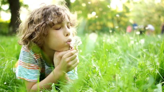 深刻な子供は、彼の手で花を夏の草原にあります。タンポポを吹く縮れ毛の少年。こどもの日。楽しい夏休み - ふわふわ点の映像素材/bロール
