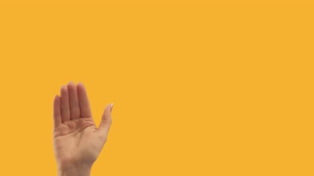 set 2 gesture templates hand showing bye copyspace