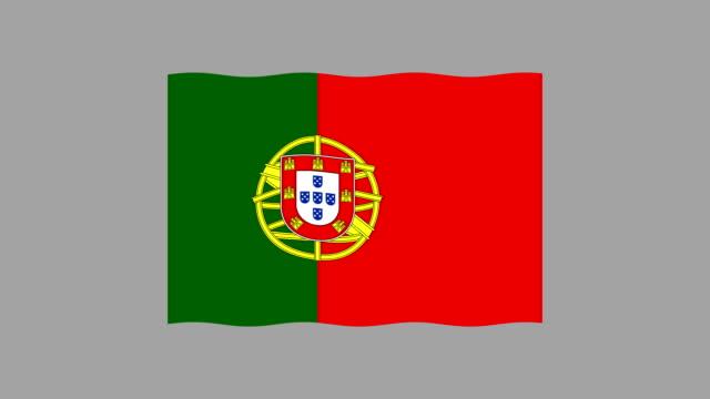 Set of National flag USA, Canada, Russia, UK, Australia, Eu, China, France, Turkey, India Brasil Italy German Portugal Looped video footage 4K