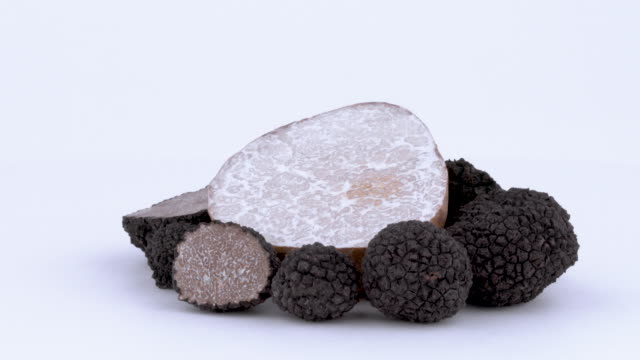set of whole and sliced black and white truffles. rotating on the on the turn table. isolated on the white background. closeup. - alta moda italy video stock e b–roll