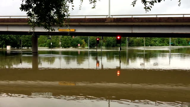 Severe Flood Water has completely flooded an underpass and is now flowing into Buffalo Bayou after Hurricane Harvey. warning sign stock videos & royalty-free footage
