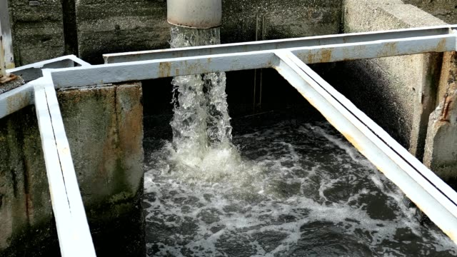 Sewage Farm Waste Water Flowing From Pipe video