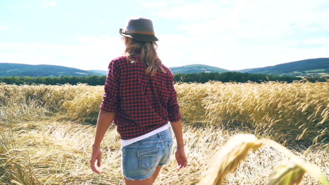 sexy woman with hat and short jeans goes through rye field video