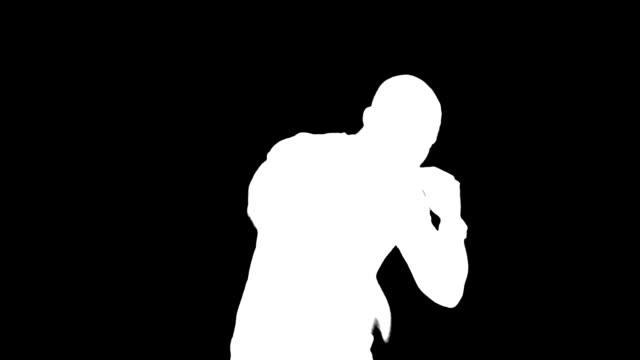 Shadow MMA