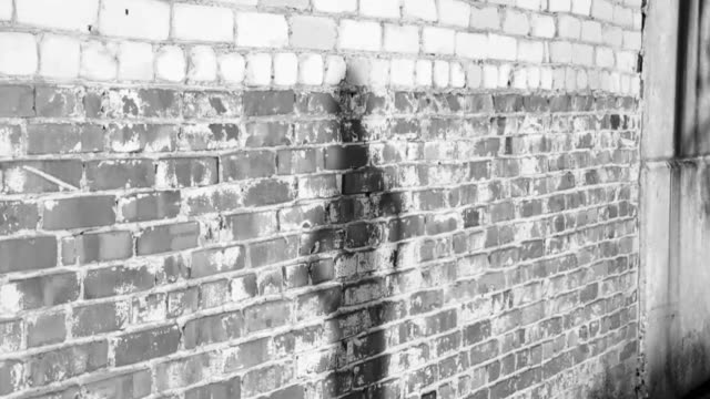 Shadow silhouette of a young girl dancing near a dirty brick wall at sunset. Black and white video. Slow motion