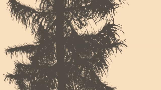 skuggorna från träden och blad - solar panel bildbanksvideor och videomaterial från bakom kulisserna