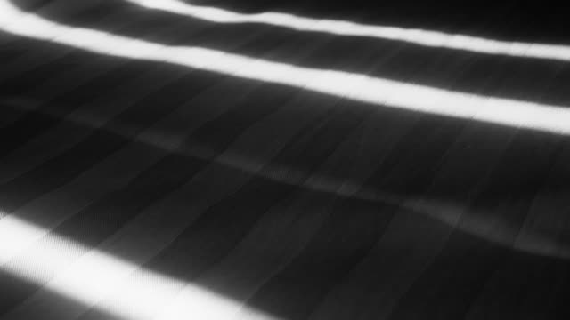 Shadows of Blinds on Bed video