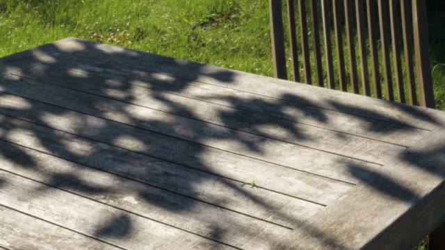 shadows on a wooden garden table - penombra video stock e b–roll