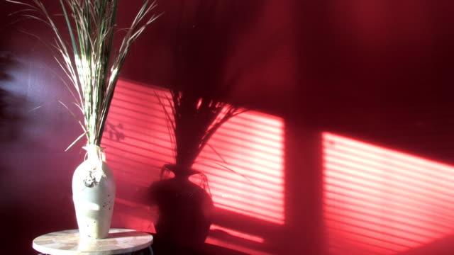 тени на стене 2 - тени стоковые видео и кадры b-roll
