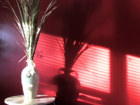 Shadows on Wall 2 video