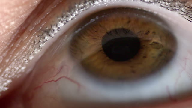 Shallow depth of field on an adults macro eyeball video