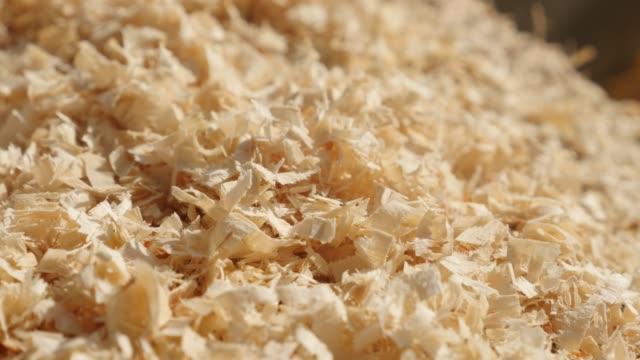 shallow dof scobs made after wood cutting 4k - segatura video stock e b–roll