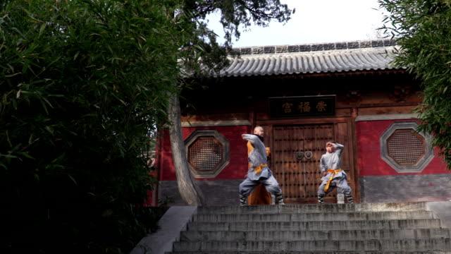 vídeos y material grabado en eventos de stock de shaolin kung fu - artes marciales
