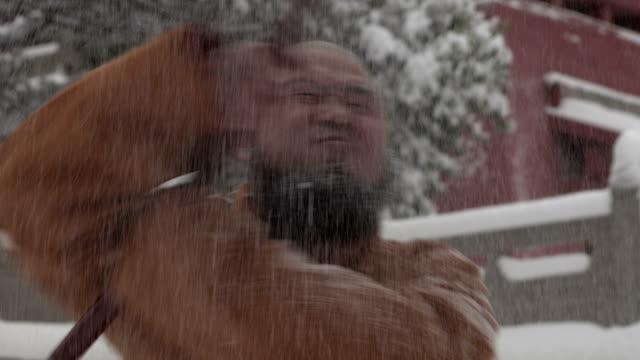 Shaolin kungfu ビデオ