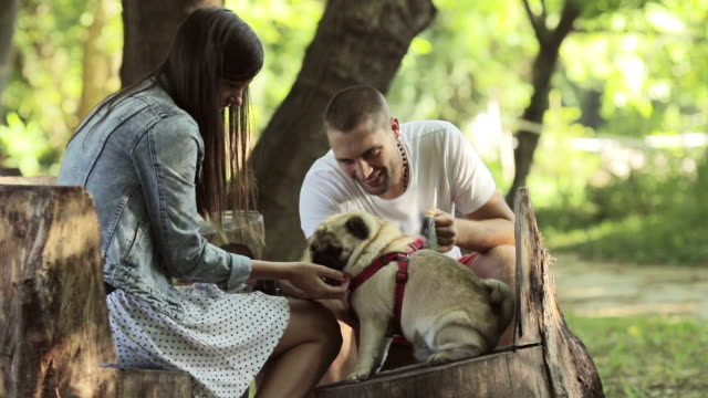 Sharing an intimate moment with pug-dog in the park video