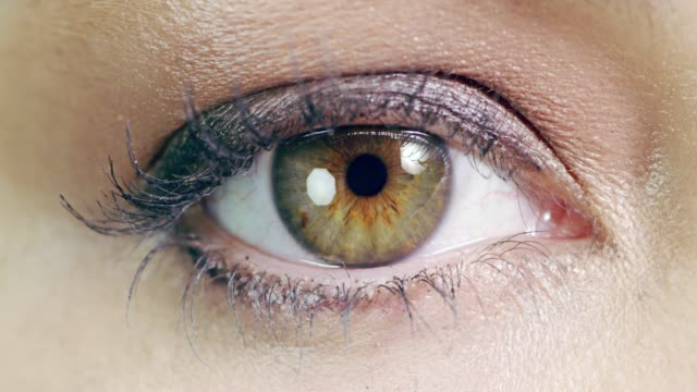 She has hypnotising hazel eyes 4k macro video footage of an attractive young woman's eye in the studio eyeshadow stock videos & royalty-free footage