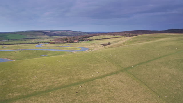 sheep grazing on the south downs near river cuckmere, england - drone shot - south downs video stock e b–roll