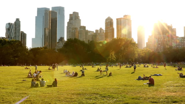 Sheep Meadow Central Park Sunset over Sheep Meadow in Central Park, New York City. central park manhattan stock videos & royalty-free footage
