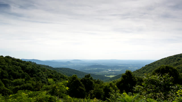 Shenandoah Valley in Summer video