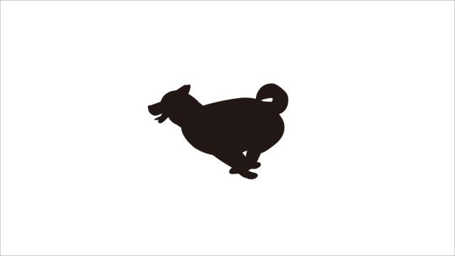 shiba dog animation - kawaii video stock e b–roll