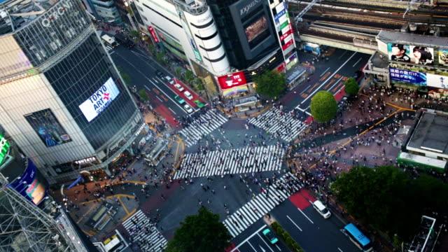 shibuya crossing aerial view tokyo japan - 澀谷交叉點 個影片檔及 b 捲影像