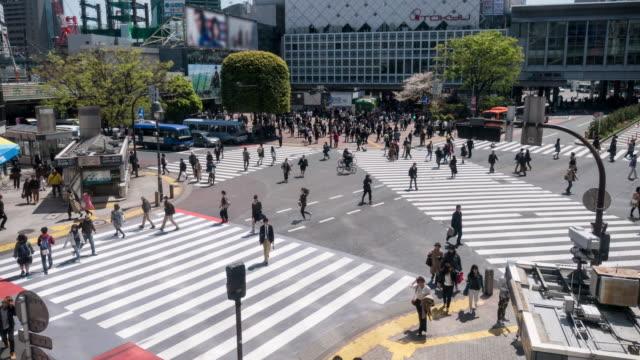 shibuya kreuzung an tokio japan - überweg warnschild stock-videos und b-roll-filmmaterial