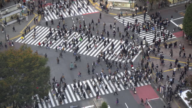 渋谷、日の時間 - 交差点点の映像素材/bロール