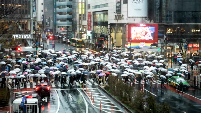 shibuya crossing in regen, zeitraffer. - regenzeit stock-videos und b-roll-filmmaterial