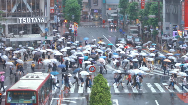 雨天東京澀谷十字路口 - 澀谷交叉點 個影片檔及 b 捲影像