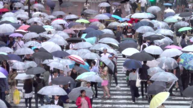 shibuya crossing in tokio am regentag - regenzeit stock-videos und b-roll-filmmaterial